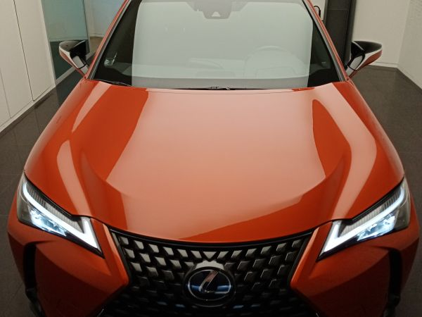 LEXUS UX UX 250h Executive +